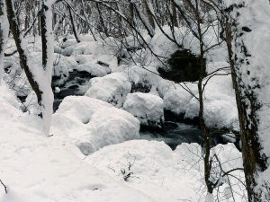 雪に埋もれた奥入瀬渓流と・・・