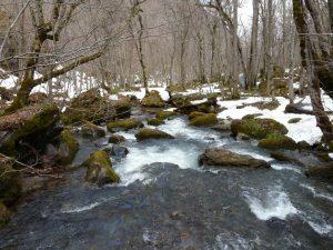 九段の滝付近
